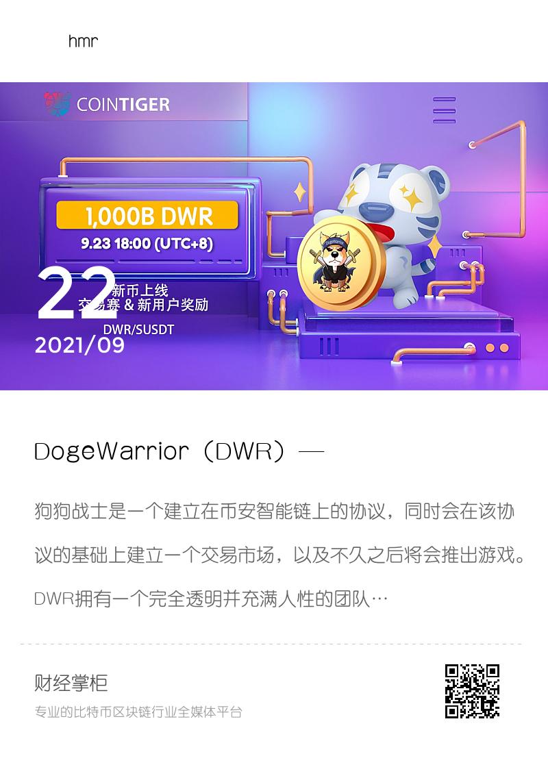DogeWarrior (DWR) ——建立在币安智能链上的协议,未来将建立交易市场、推出游戏分享封面